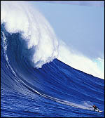 big-wave-surfing-cortes